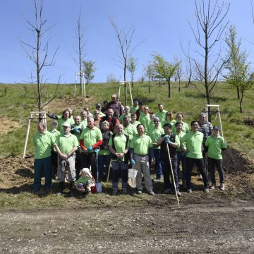 The Hyundai car plant and Nošovice citizens join forces to plant trees